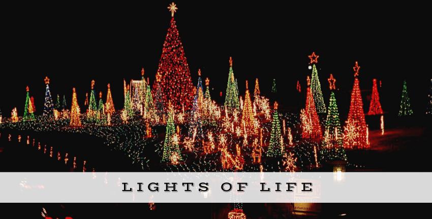 Holiday Lights of Life University
