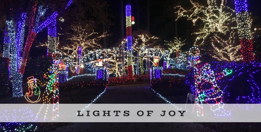 Holiday Lights of Joy