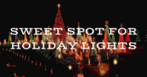 sweet spot for holiday lights