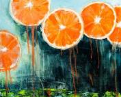 fence gallery oranges