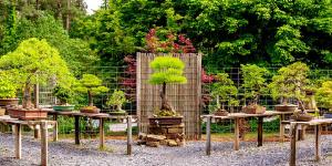 smith gilbert gardens